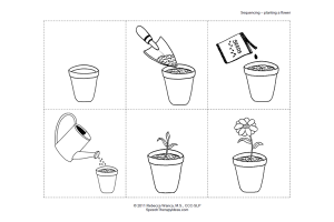 Planting a Flower Sequencing Activity | Therapy Ideas