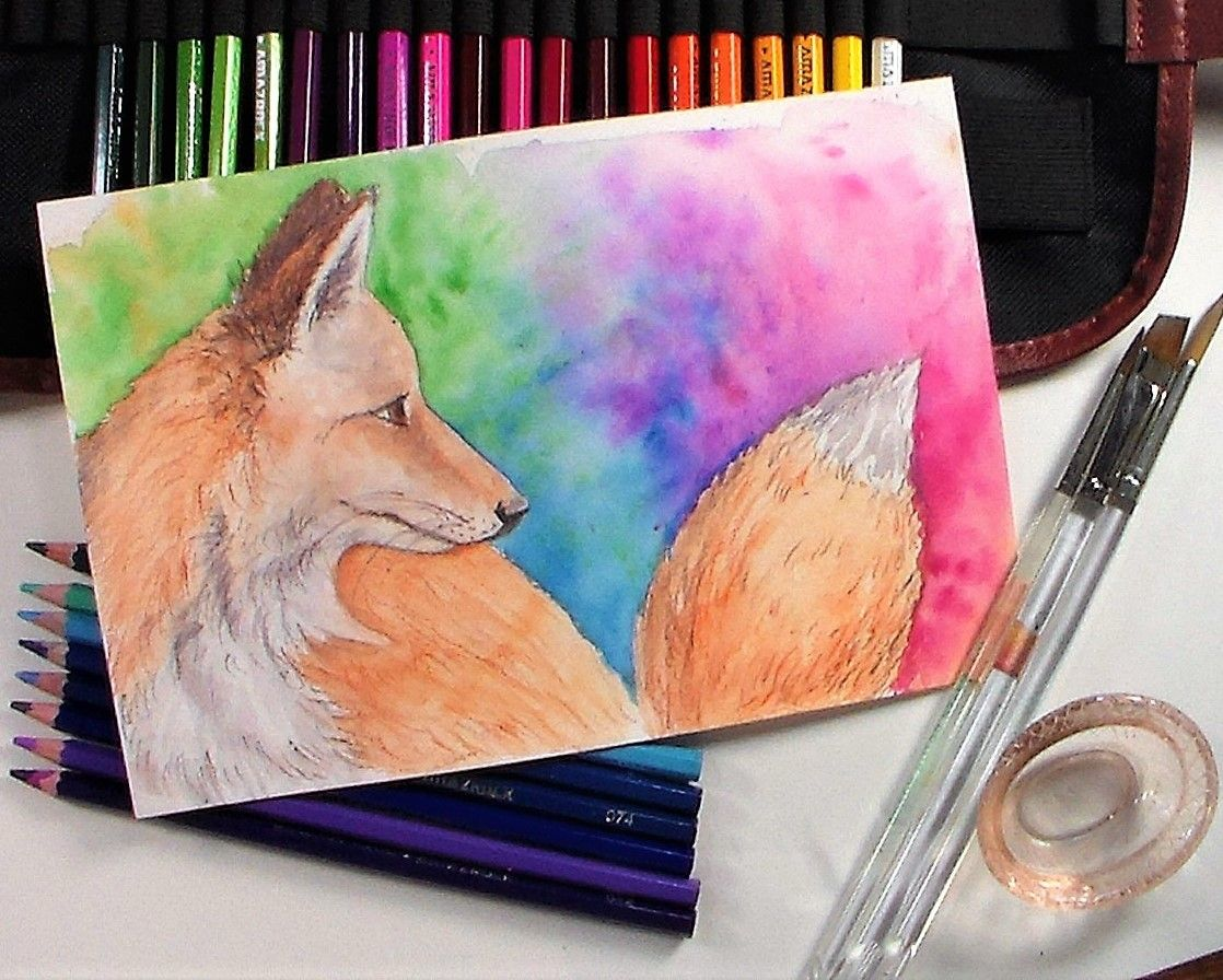 Fox In Watercolor Pencil And Giveaway Watercolor Pencils