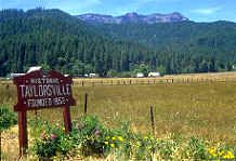 Greenville Taylorsville Indian Valley Plumas County N Calif California Travel Life Is An Adventure Places To Visit