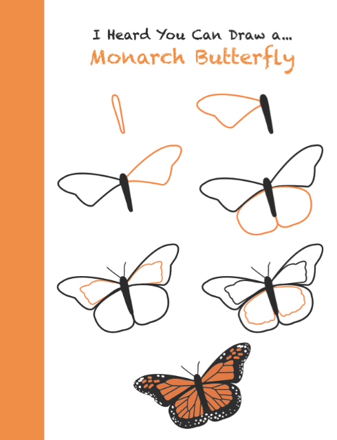 How to draw a monarch butterfly step by step use in science or