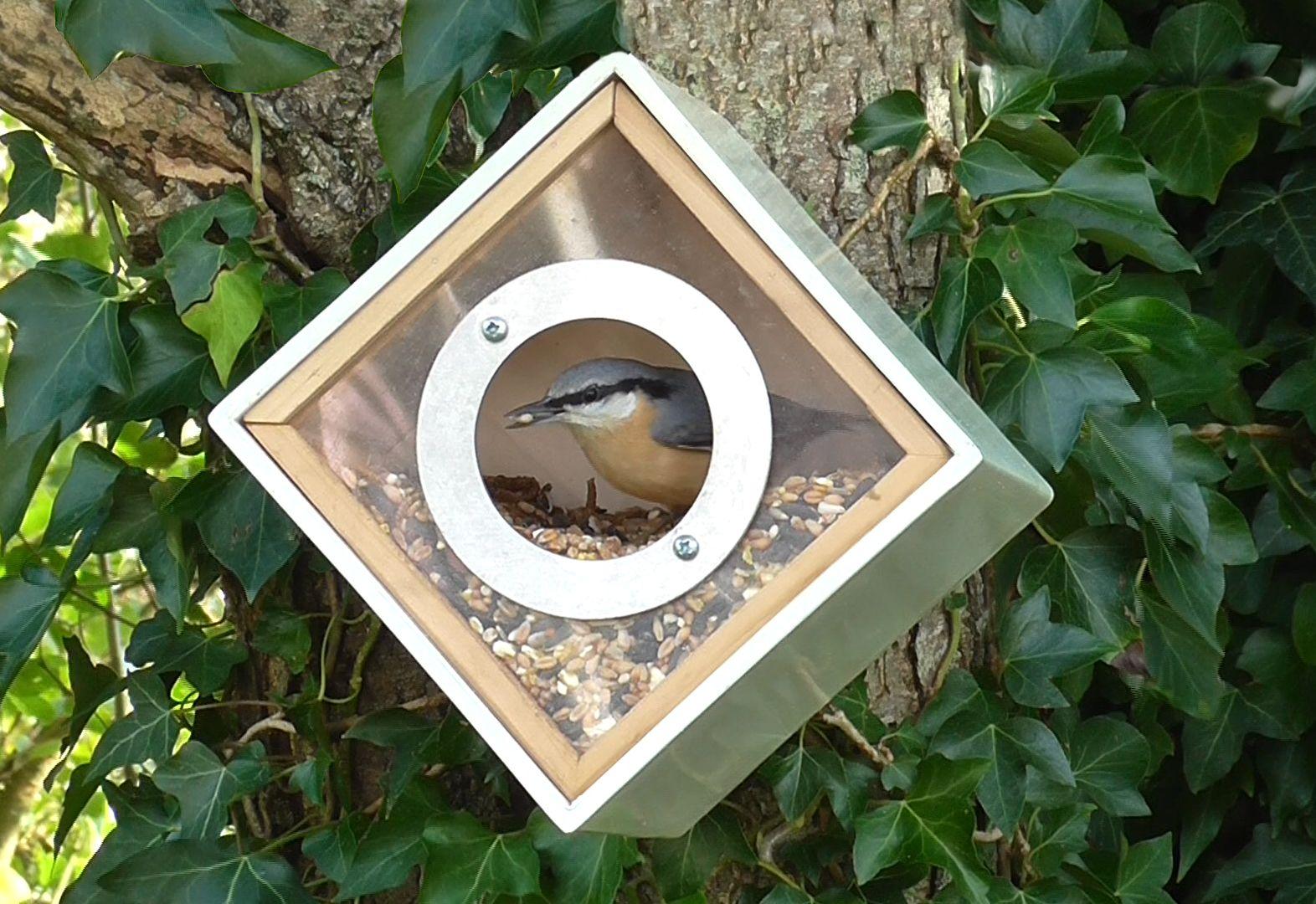 Large Capacity Hanging Bird Feeders