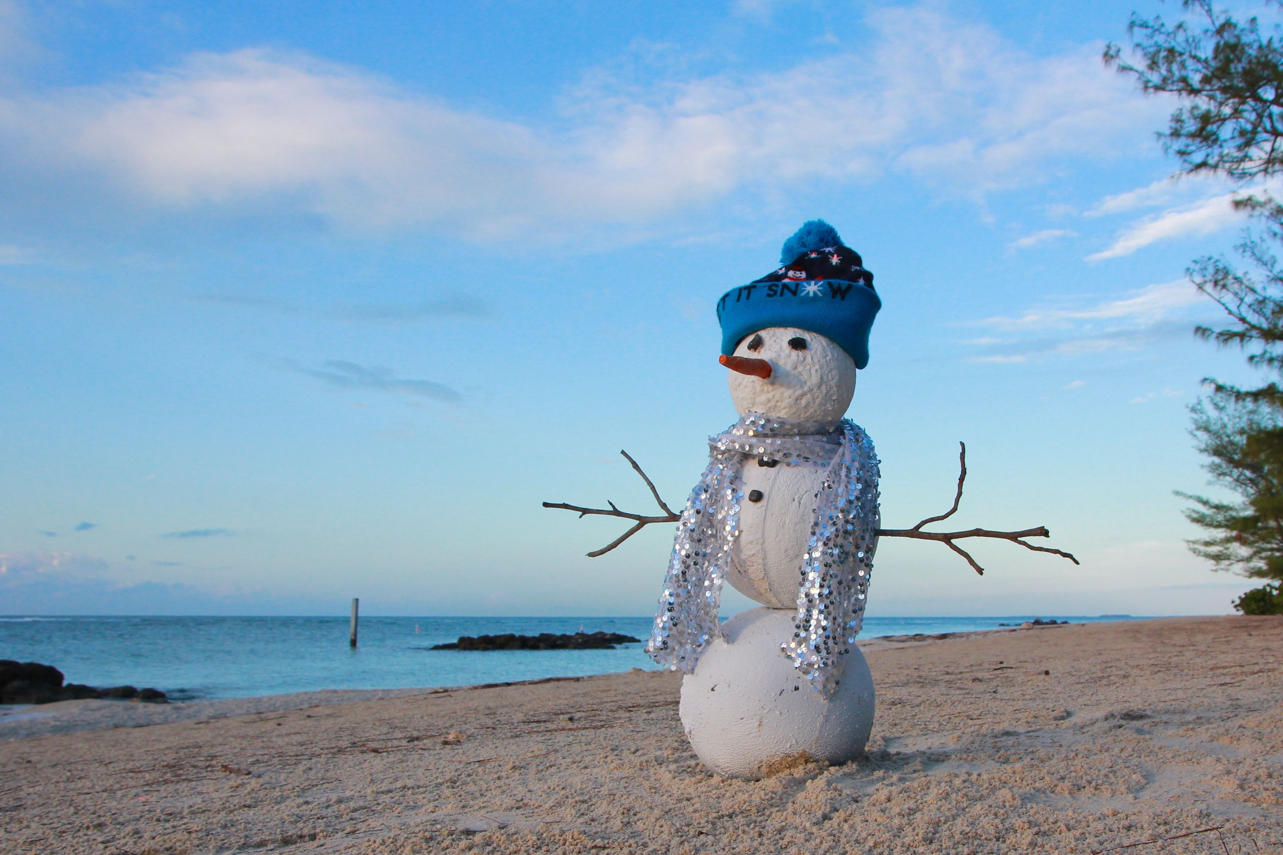 Florida s Winter Wonderland FLStateParks Florida Beach Holidays