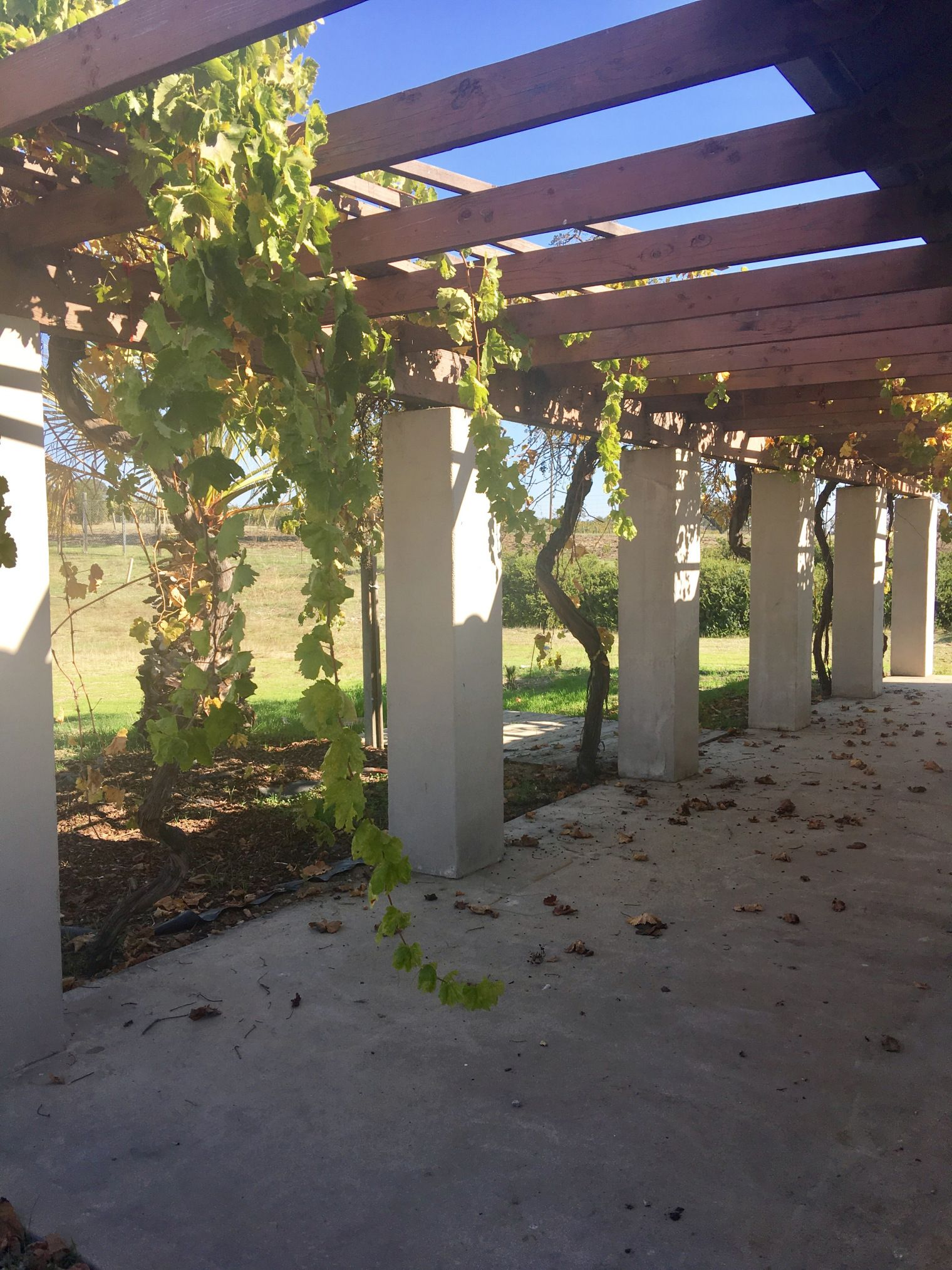 Paso Robles California Wine Country affordable weekend trip