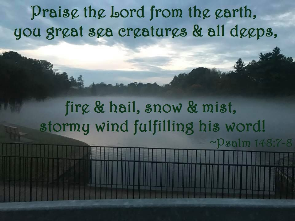 Psalm 148 7 8 Praise The Lord From The Earth You Great Sea