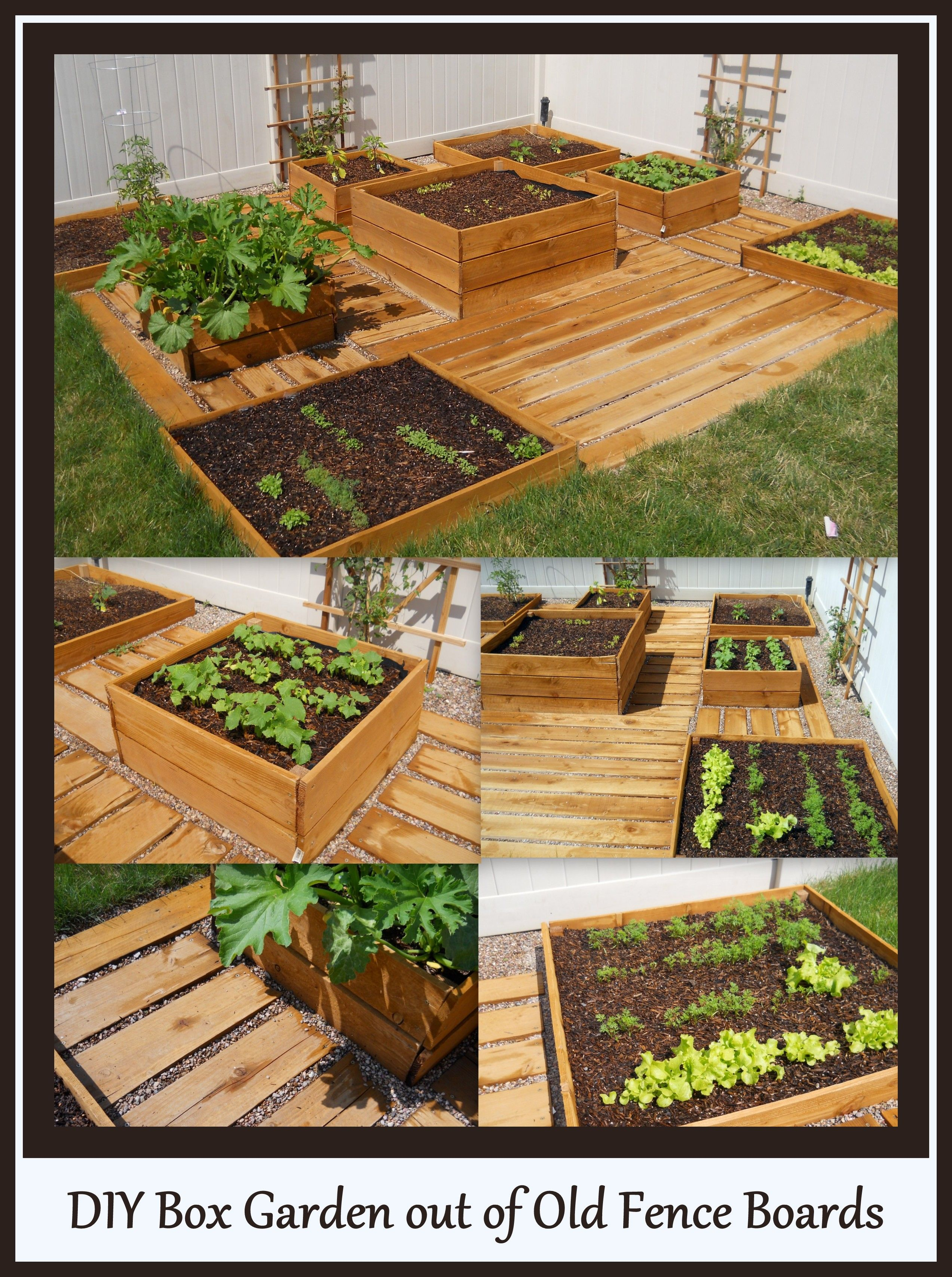 DIY Box garden, with wooden paths and pebbles. All you
