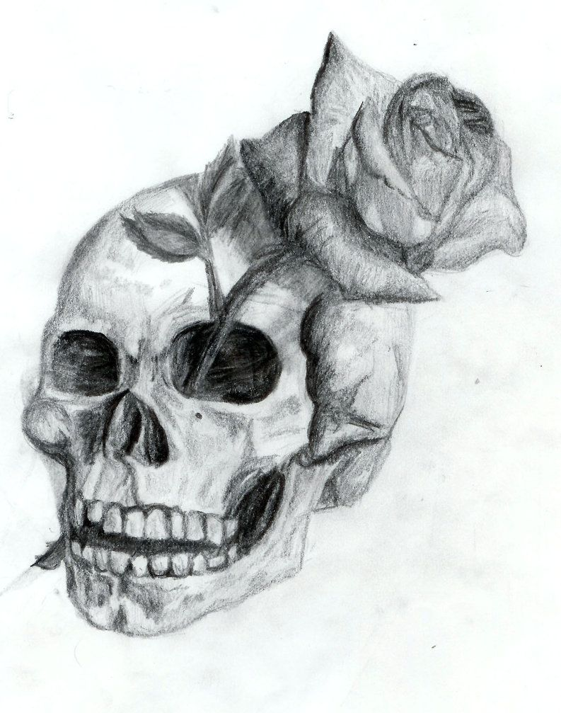 real sketched drawings | skull and rose by ~dyslogistic on ... - Coloring Pages Roses Skulls