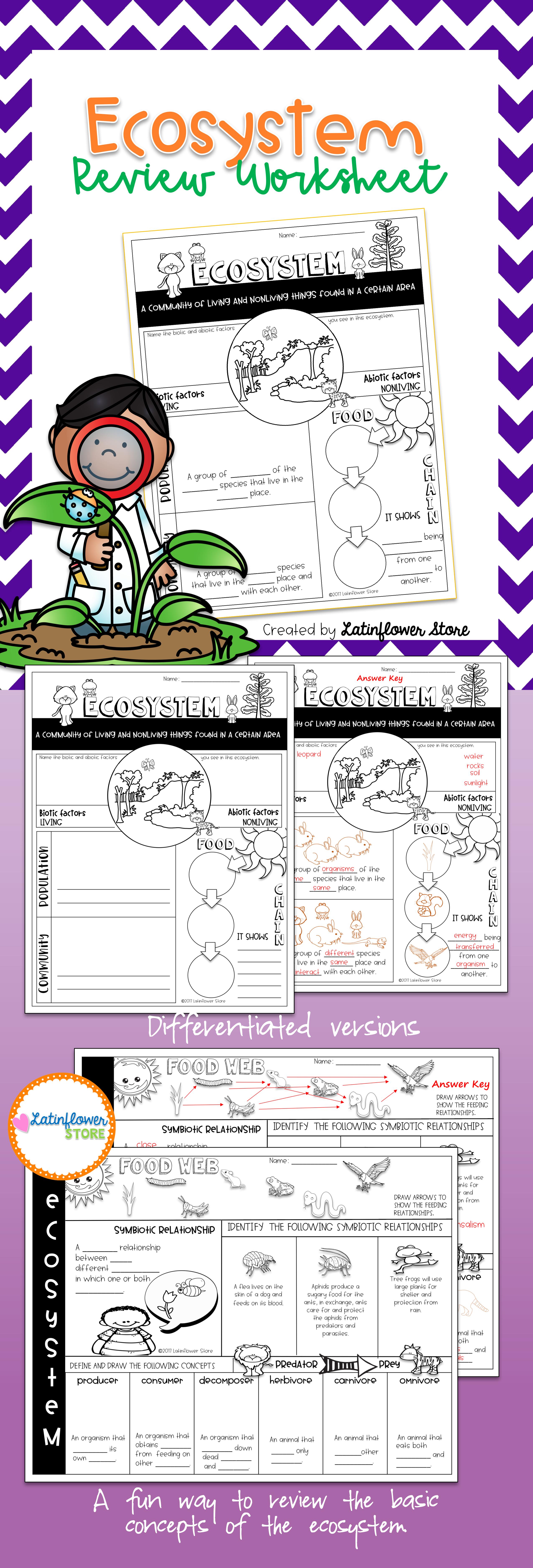 Worksheets Ecosystem Worksheet ecosystem review worksheet worksheets food webs and chains worksheet
