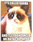 Funny Cat Humor Grumpy Cat I Will Not Refrigerator Magnet   eBay