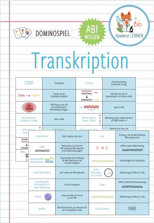 Transkription Domino Spiel Abitur Unterrichtsmaterial Im Fach Biologie In 2020 Domino Spiele Biologie Unterrichten Biologie Studium