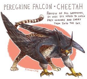 peregrine falcon griffin - Google Search | Creature drawings ...