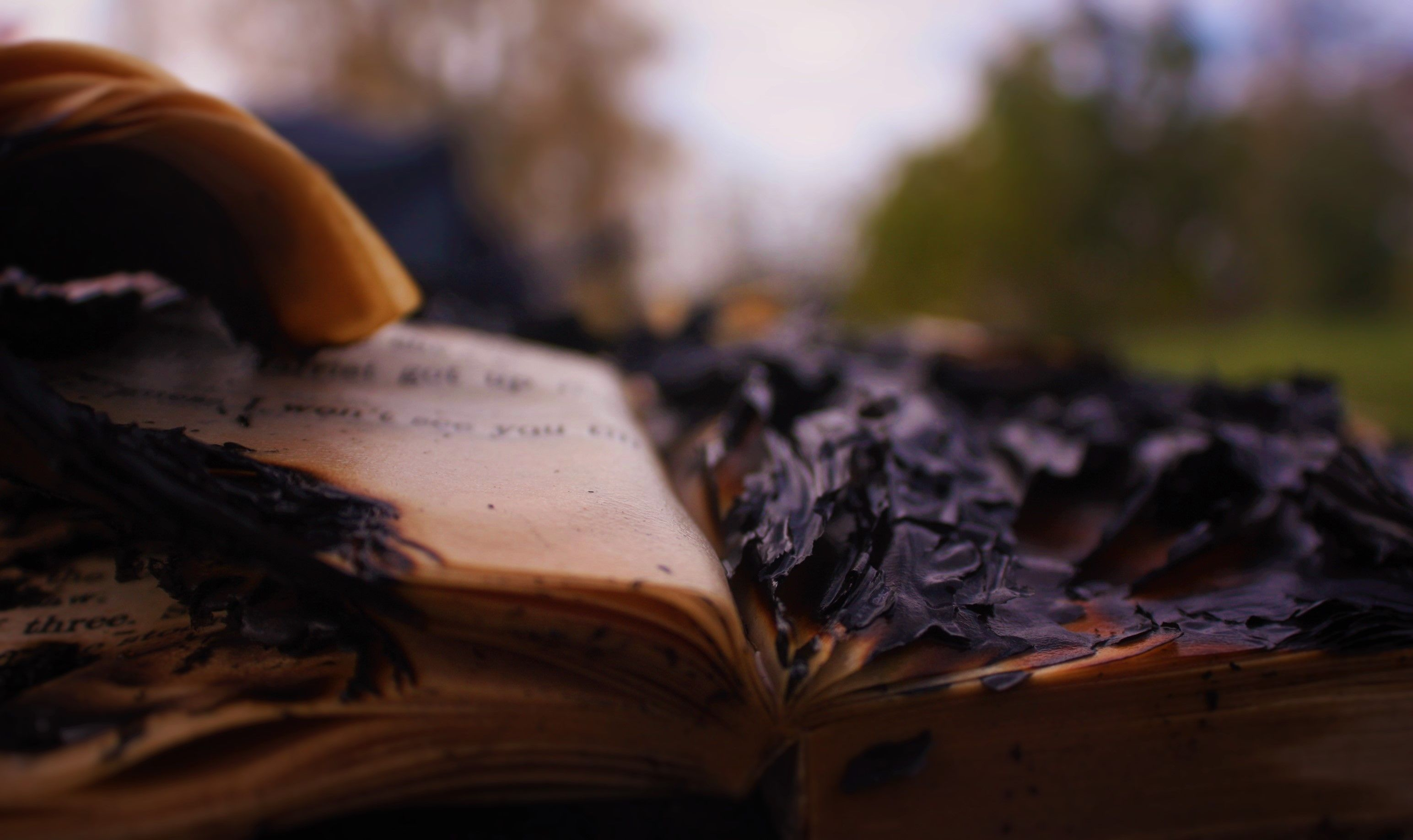 Burned Book Fire Safe Book Ashes Cool Flames