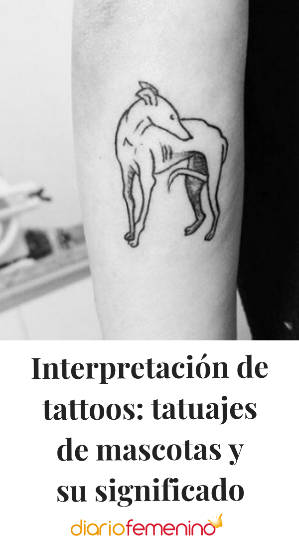 Interpretacion De Tattoos Tatuajes De Mascotas Y Su Significado