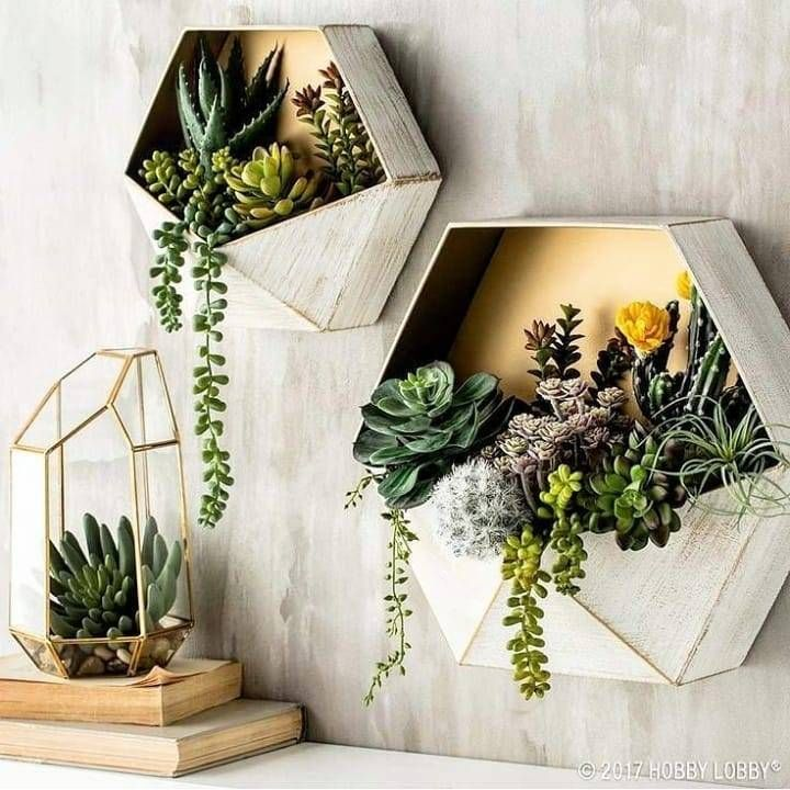 Vasinhos hexagonais de suculentas para colocar na parede!💚 desconheço autor Siga @construindominhacasaclean @grazielalarainteriores Veja + no blog www construindominhacasaclean com📌 construind is part of Home decor trends -