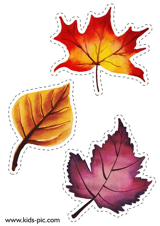 шаблоны осенних листьев для вырезания из бумаги A4 ...