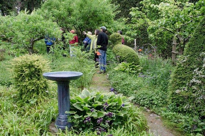 Child Friendly Garden Design Seattle WA Kids Events Seattle