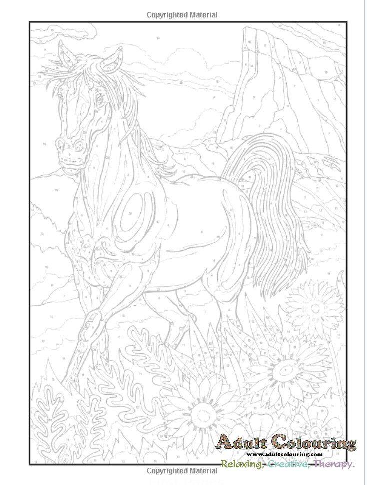 Horses Colour By Number Arte Com Numeros Desenhos Para Colorir Colorir