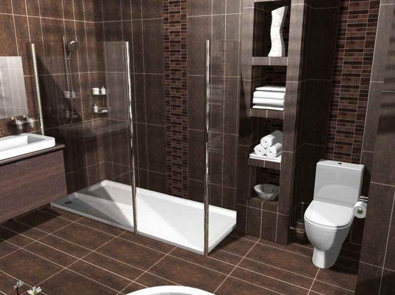 Bathroom Shower Design Ideas  Httpdreamhomeimageindexphp Impressive Free 3D Bathroom Design Software Decorating Design