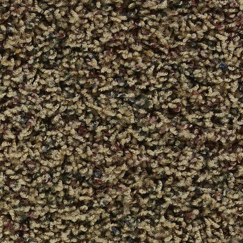 Citation Moselle Texture Frieze Carpet 12 Ft Wide At Menards Frieze Carpet Stair Runner Carpet Carpet Remnants