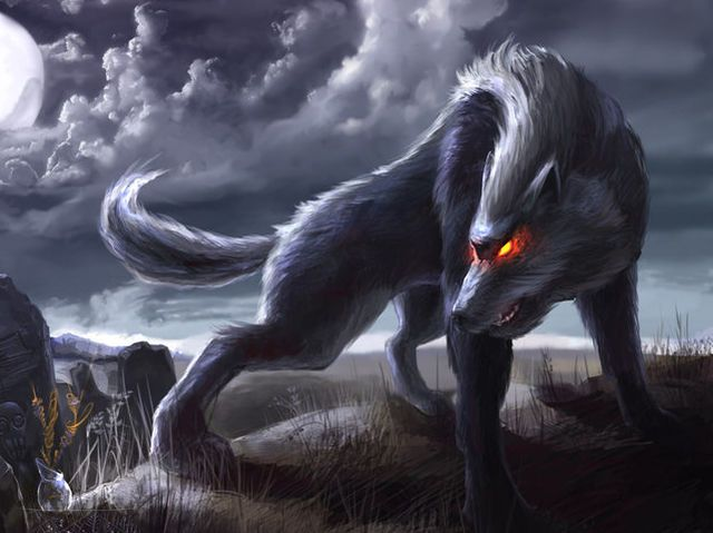 What Is Your Spirit Animal Wolf Wallpaper Moon Artwork Wolf Images Anime wolf wallpaper hd