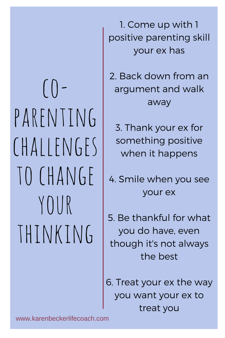 How Many Of These Co Parenting Challenges Have You Completed Or