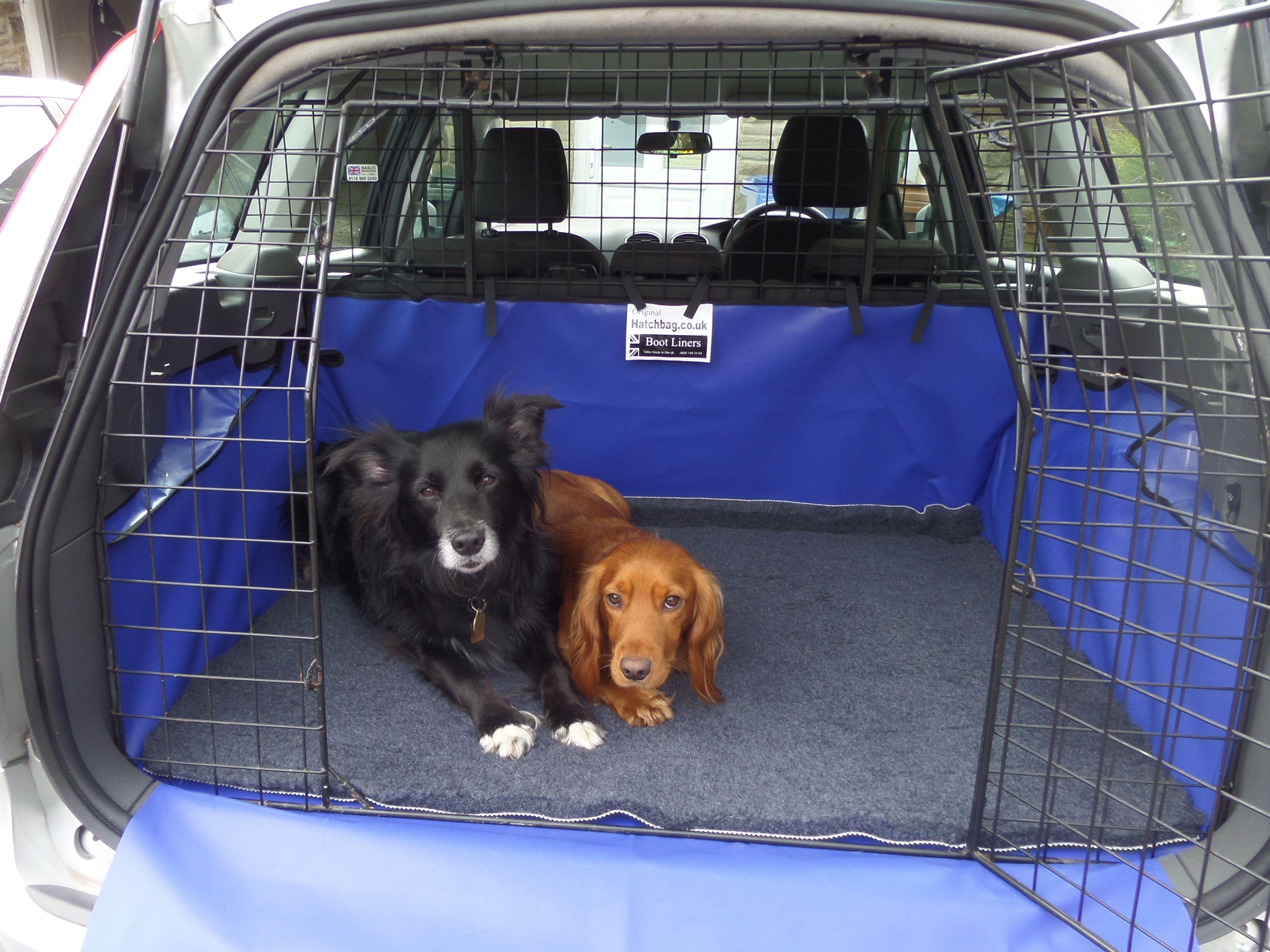 Ford Focus Estate 2011 Onwards Boot Liner Dog Boarding Kennels Dogs Dog Equipment