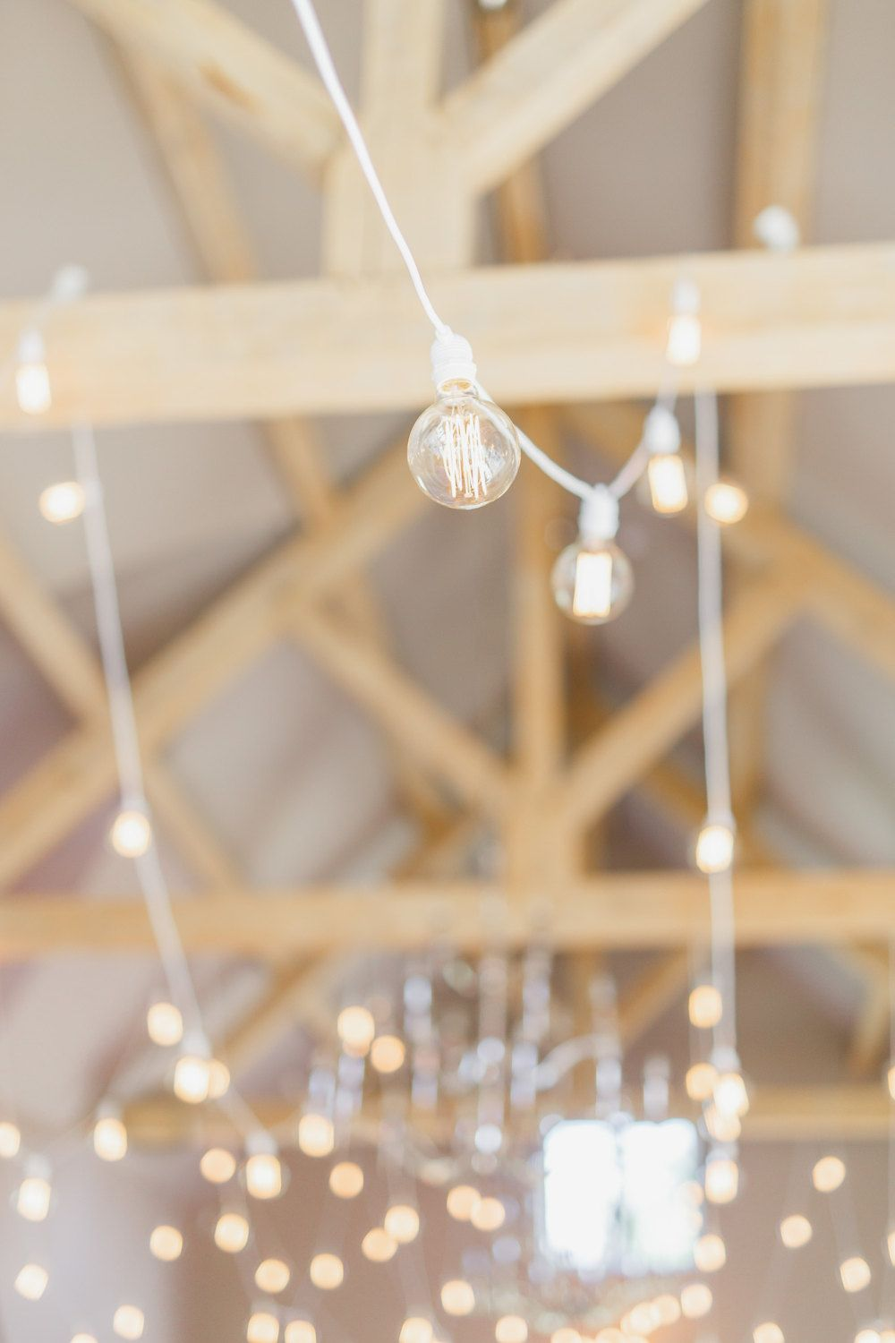 edison bulb wedding stringfestoon lighting 25m with 30