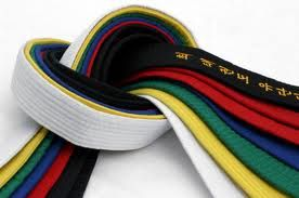 World Taekwondo Federation Taekwondo Belts We Are Slightly