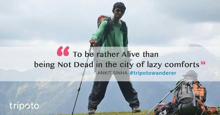 #tripotowanderers