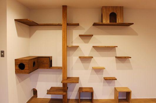 02 2033 cats pinterest katzen katzenm bel und kratzbaum. Black Bedroom Furniture Sets. Home Design Ideas