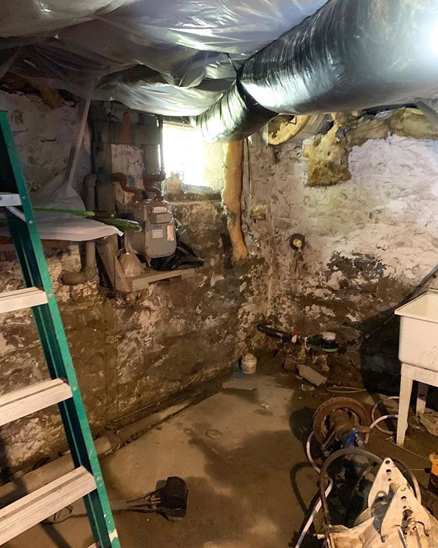 Basement mold cleanup in Palmyra NY. rochesterny