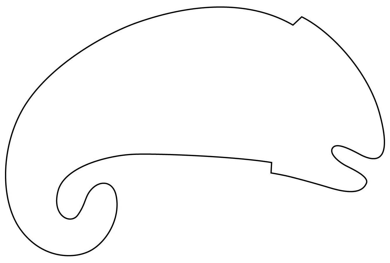Chameleon Template For Eric Carle Or Leo Lionni Make Feet