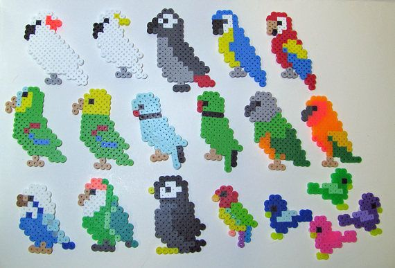 Perler melting bead Parrots! Macaw, Amazon, African Grey