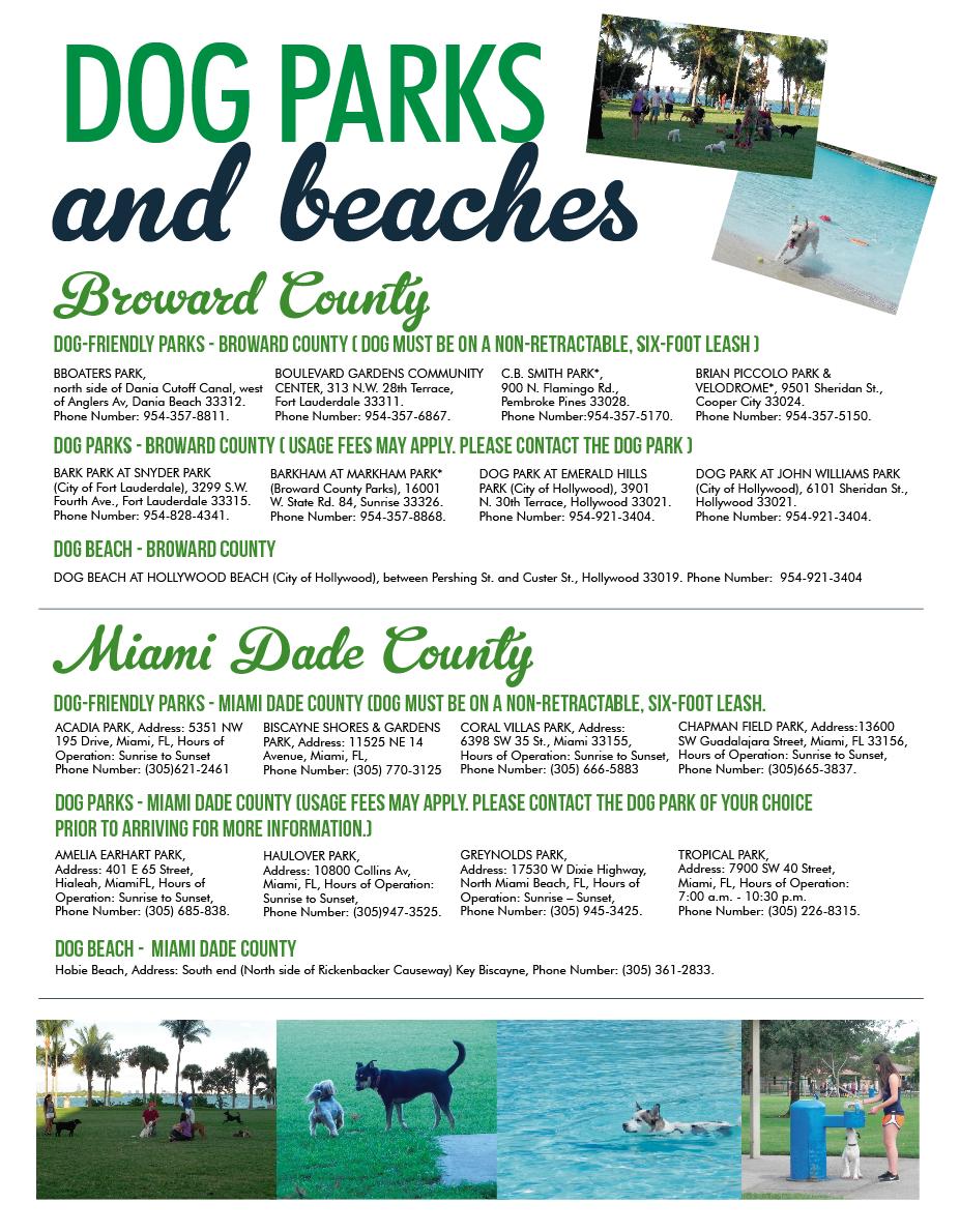 Dog Parks And Beaches For Dogs In Miami Dade Broward County Playas Y Parques Aptas Para Mascotas En Los Condados De