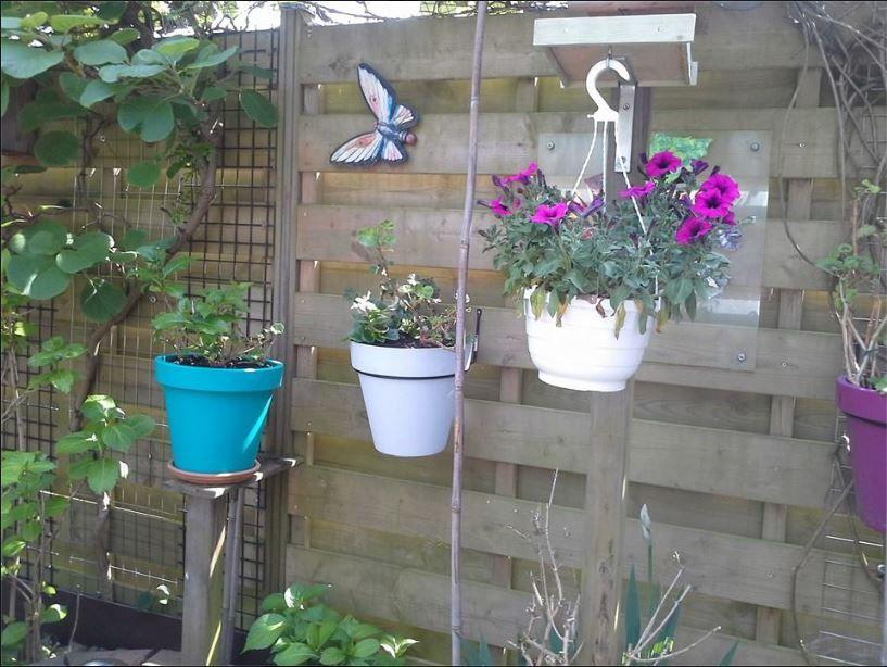 Grote potten aan de schutting tuin