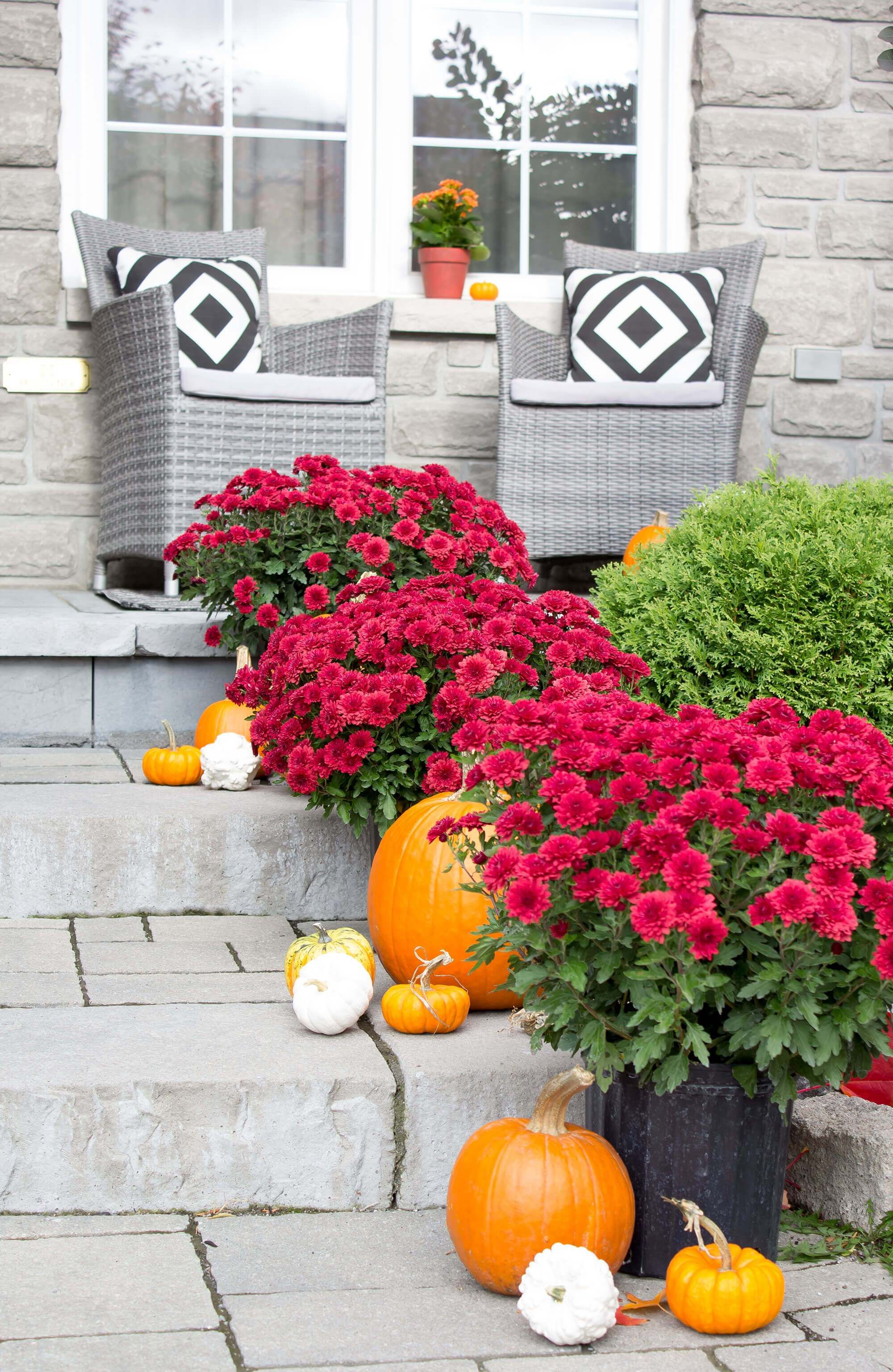 SIMPLY FALL (YouTube Edition): Fall Porch Stairs Refresh  Fall