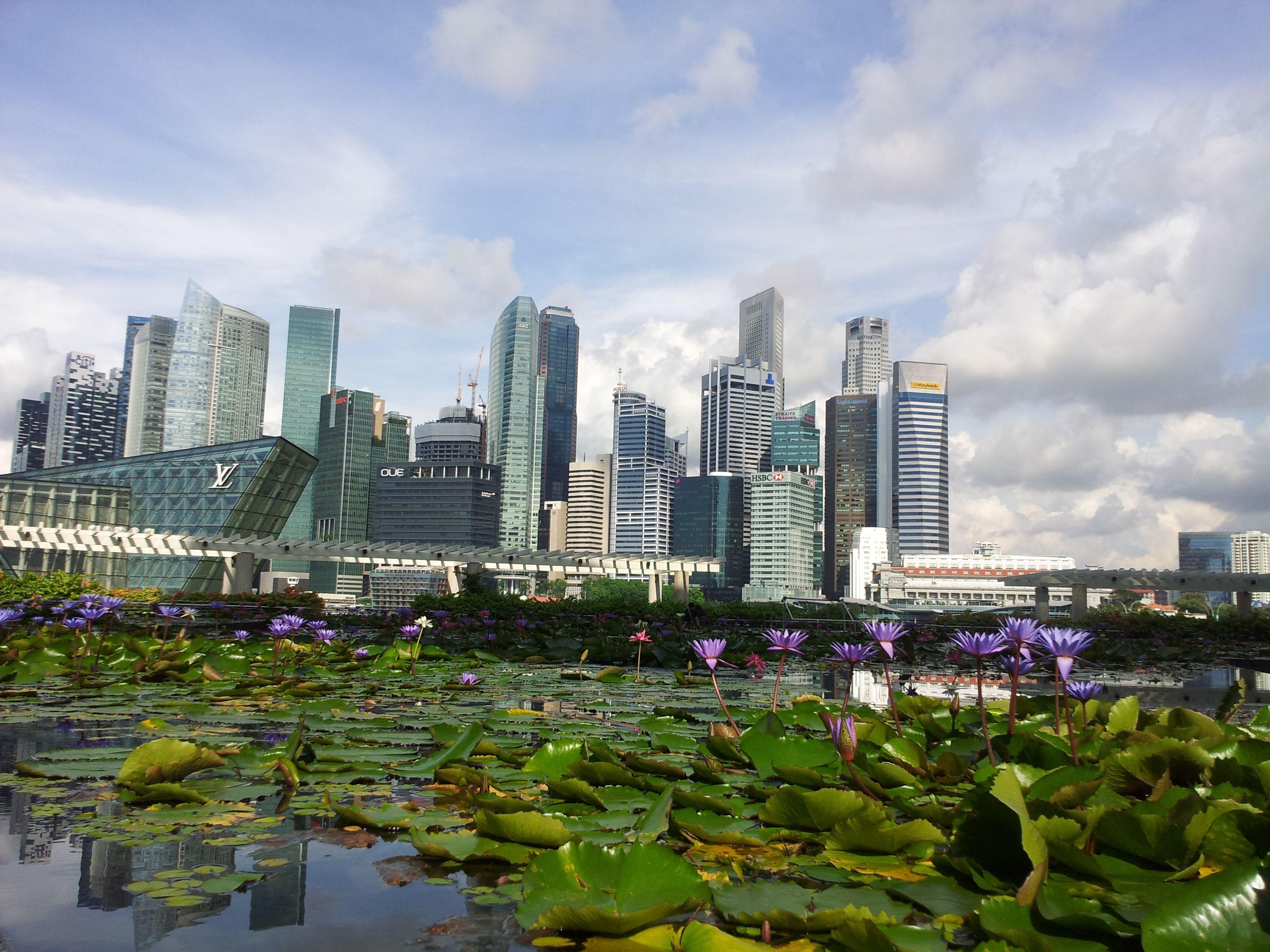 federica, singapore_Amiche di Fuso