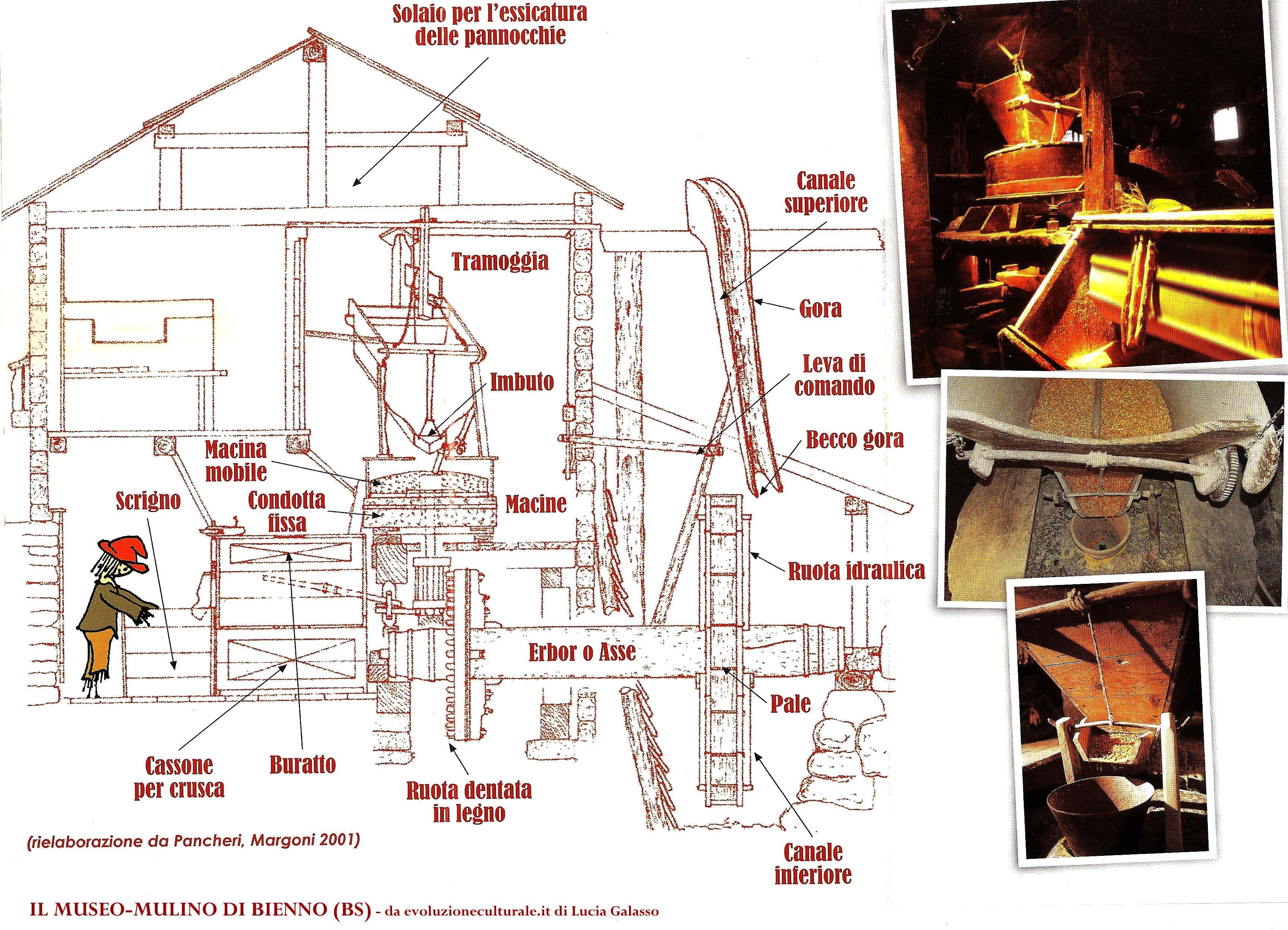 Schemi Elettrici Base Per Principianti : Come funziona il mulino ad acqua mulino elettrico per cereali con