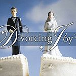What I learned about startups from: Divorcing Joy. Twice