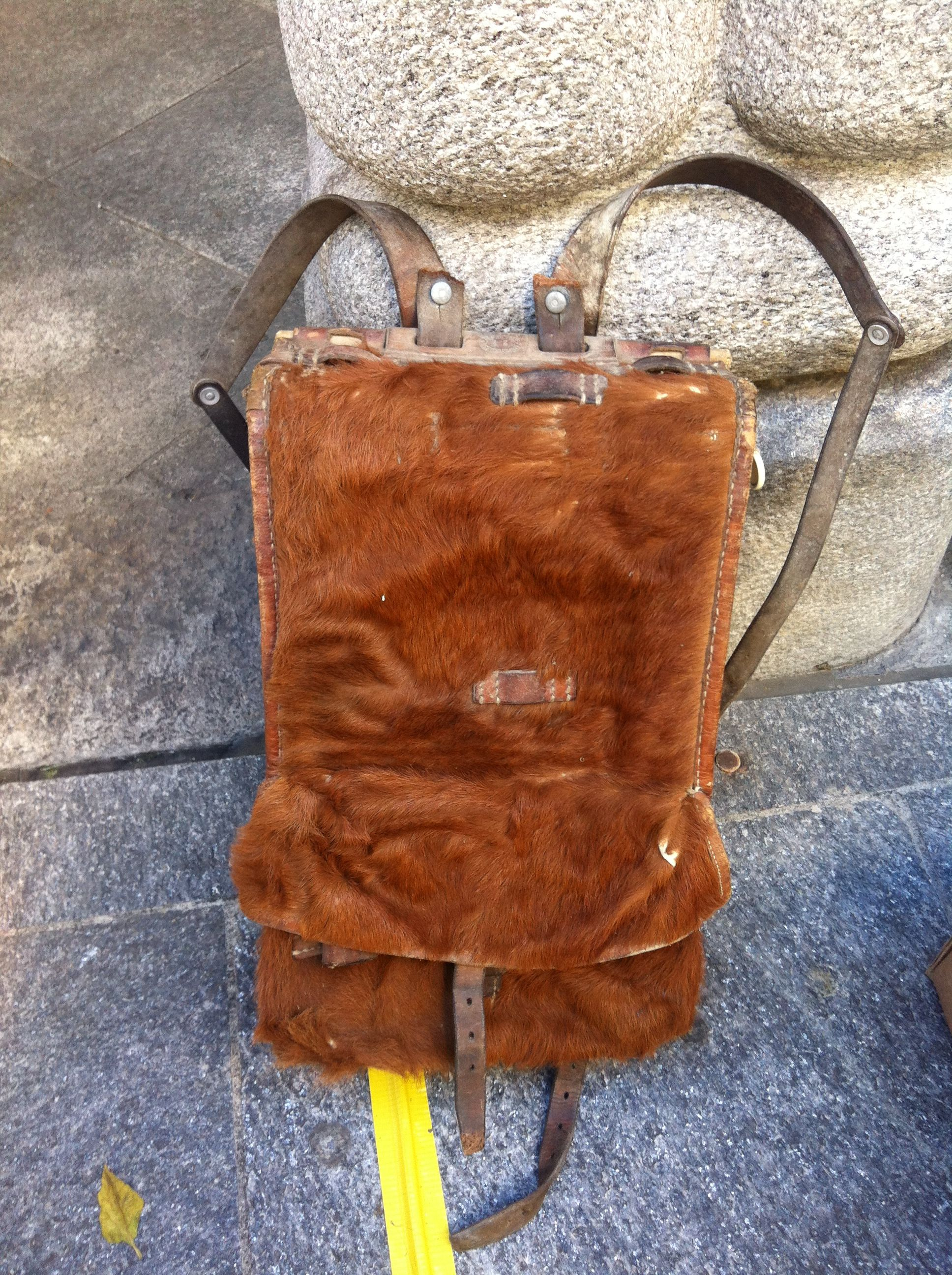 Old, fur-covered Swiss-military backpack