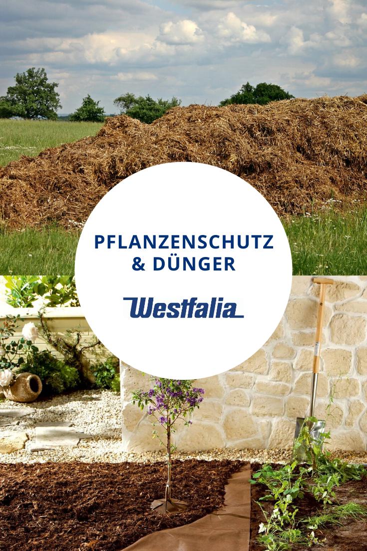 Pflanzenschutz Und Dunger Pflanzenschutz Pflanzen Gartendunger