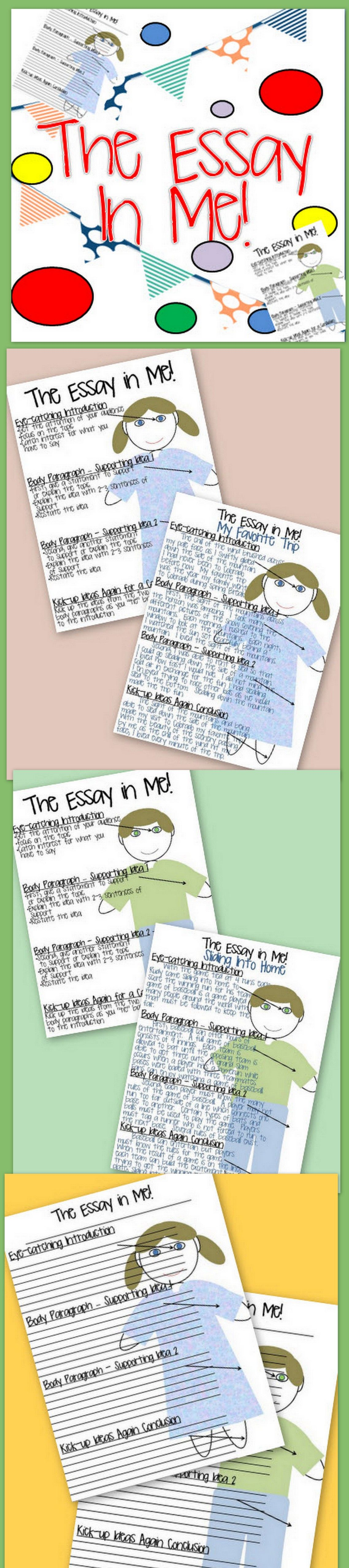 Writing An Essay Graphic Organizer The Essay In Me