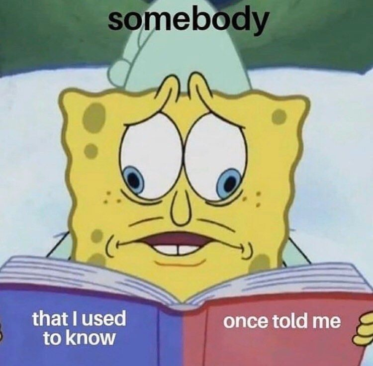 Meme S Quotes Memes Its Memes Laughing Memes Memes Quotes Funnie Memes I Meme Truthful Memes Happy Meme What Me Spongebob Memes Funny Memes Edgy Memes