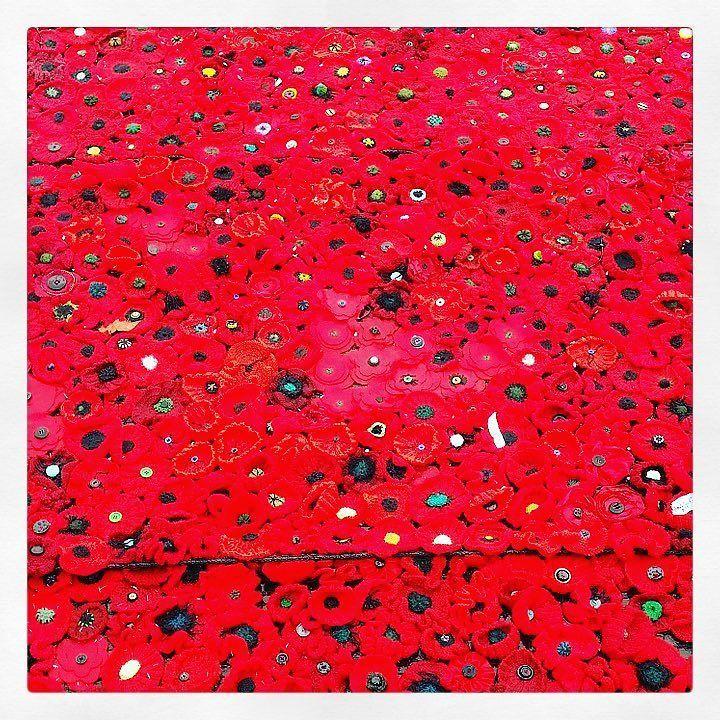 In flanders fields the poppies blew john mccrae 1915