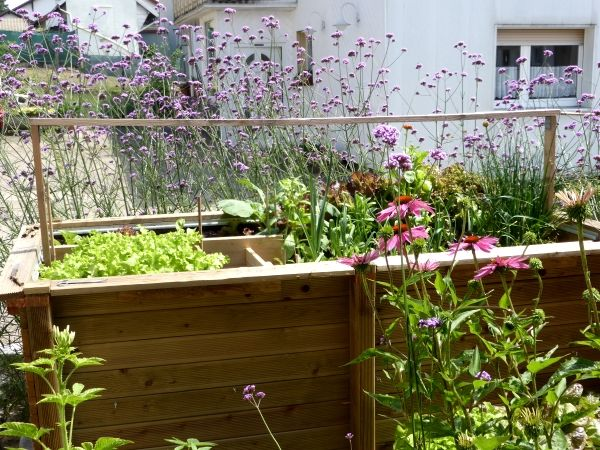 hochbeet bauen bauanleitung und hochbeet bef llen gardening pinterest hochbeet garten. Black Bedroom Furniture Sets. Home Design Ideas