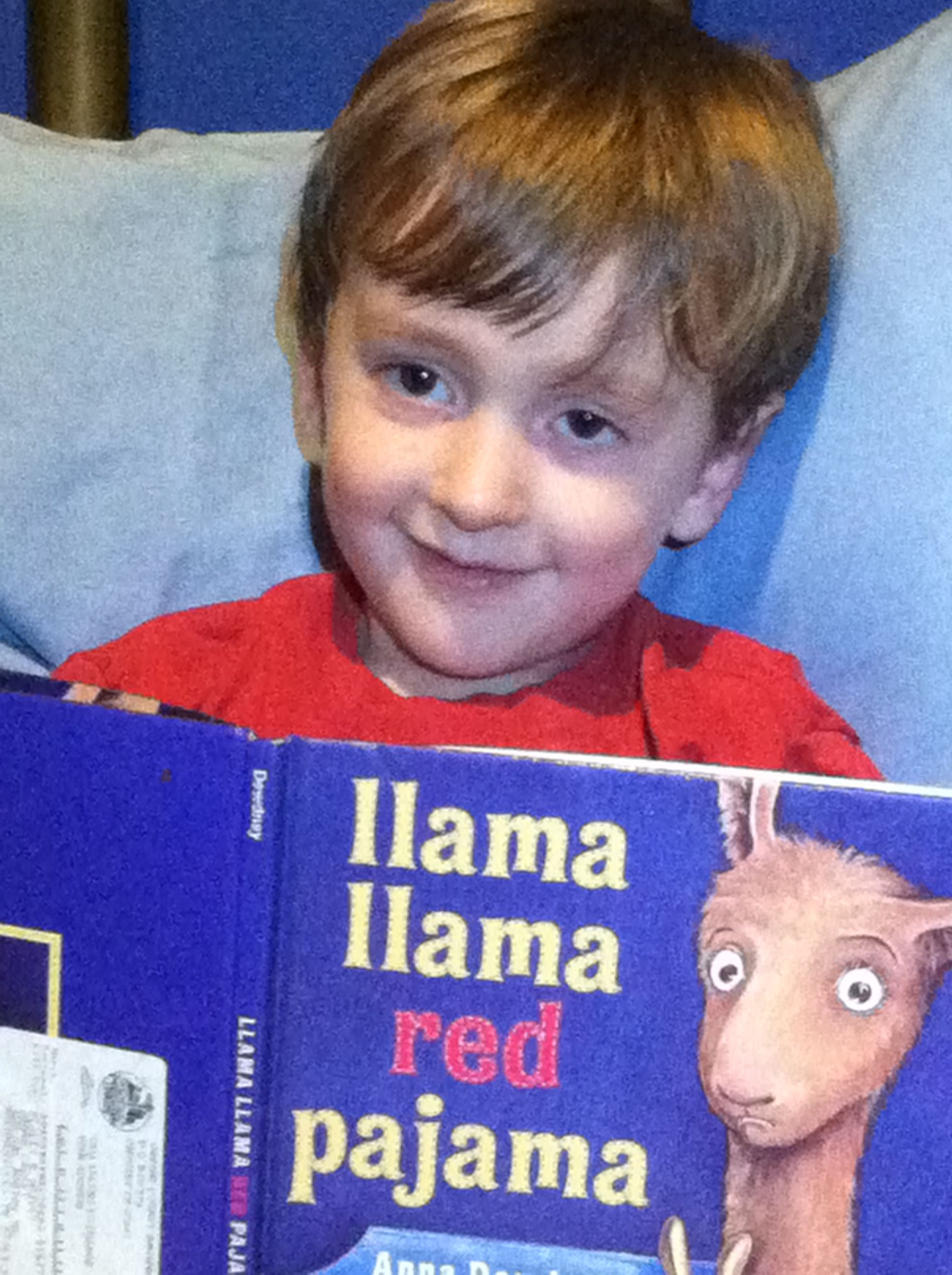 Picture of my son with Llama Llama book.  Used for texting my invite and as part of the cake.   Invitation:  Llama llama red pajama Invites you to a birthday drama The party's for Warren,  he's turning 4 Come celebrate, meet real llamas and more!  October 5 is the date It's happening soon and we can't wait! Come to Walnut Ridge Llama Farm It's in Chuckey and full of charm.  Llama  hums a birthday tune  The fun takes place from 10 til noon Llama llama games in store  Along with lunch, cake…
