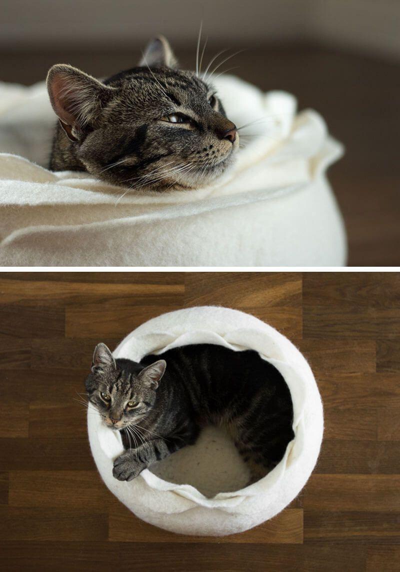 cat beds 6 (1)