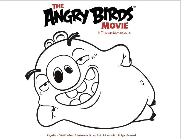 The angry birds movie is coming to theaters may 20th are your kids excited