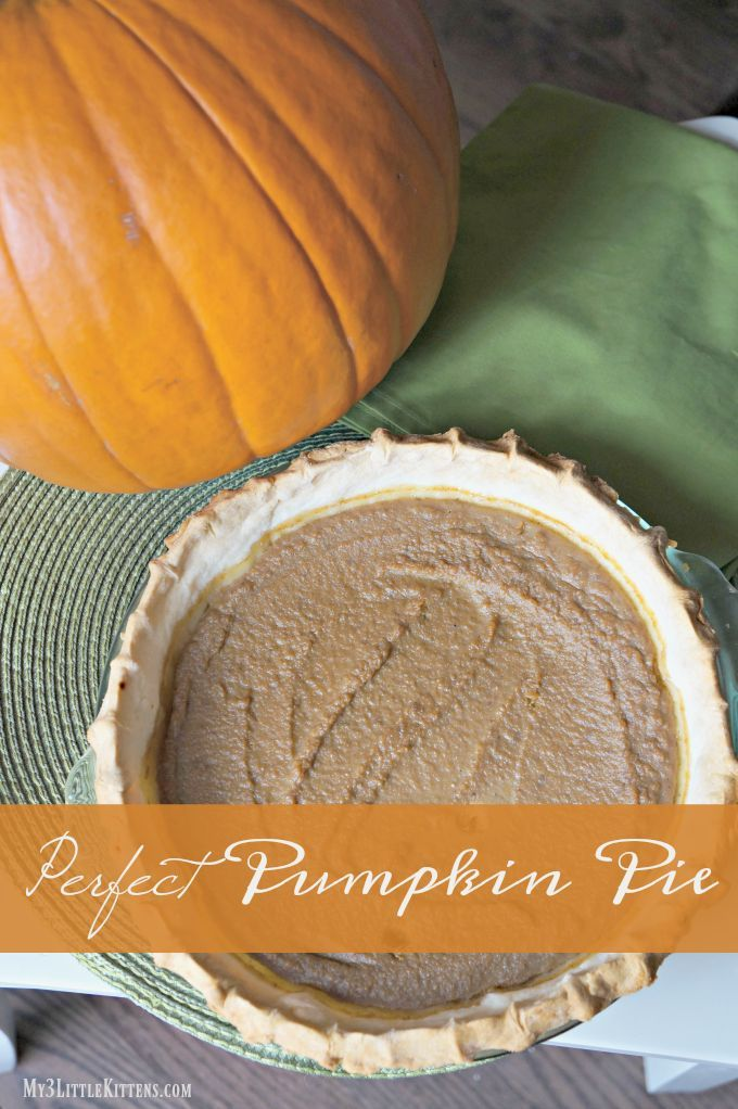 I can't even try to count all the delicious pumpkin pie