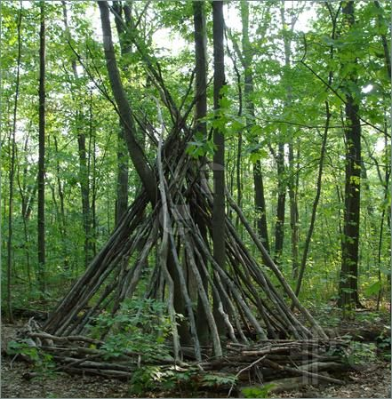 A Teepee Made From Tree Branches In The Forest Tree Branch Decor Natural Playground Tree Teepee