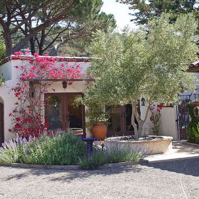 Spanish Courtyard Love The Olive Tree And Sage Would Work Well In The Land Of Milk And Honey